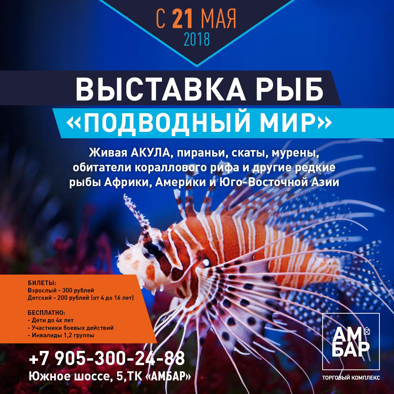 выставка рыб в ТК АМБАР